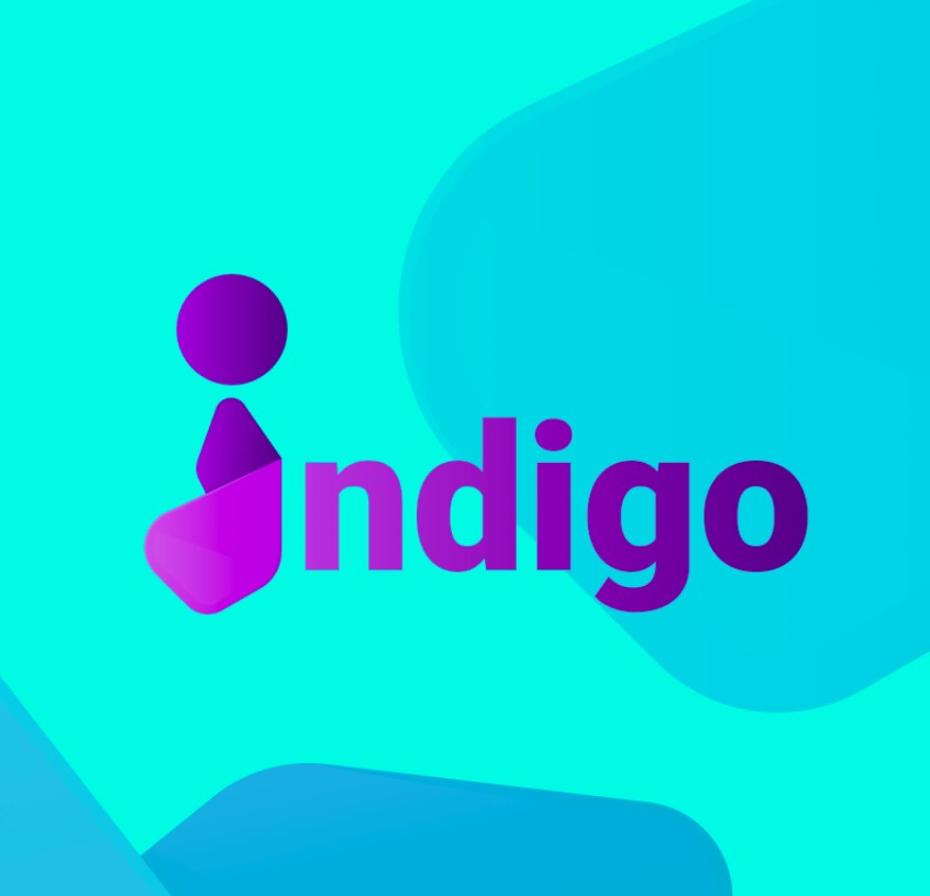 Indigo bot